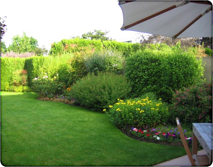 Avant réalisation : Réduction de l'impact des végétaux. Créer un jardin aux formes plus épurée
