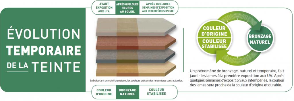 Teinte evolutive bois composite